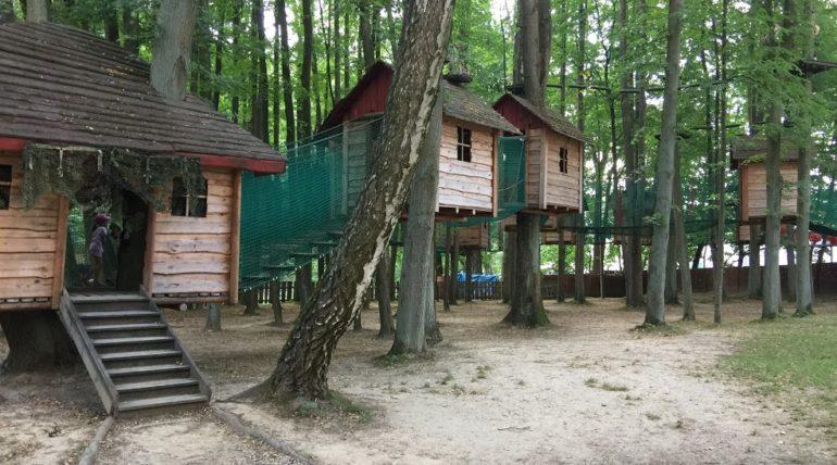 Makumba w Olsztynie – domki na drzewach